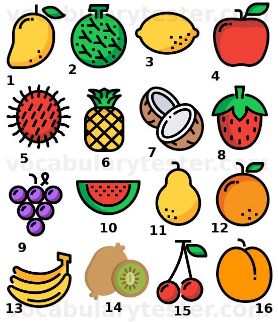 Edible fruits vocabulary